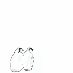 Two-Penguins