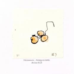 Persimmon-Diospyros-Kaki-Greeting-Cards